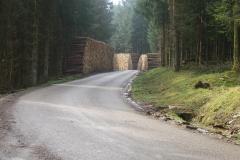 piles bois bord de route