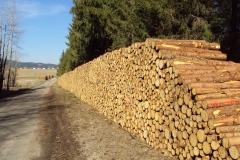 piles bois bord de route2