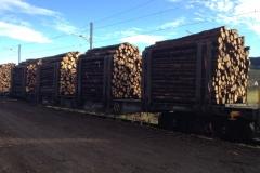 wagons chargés bois papier